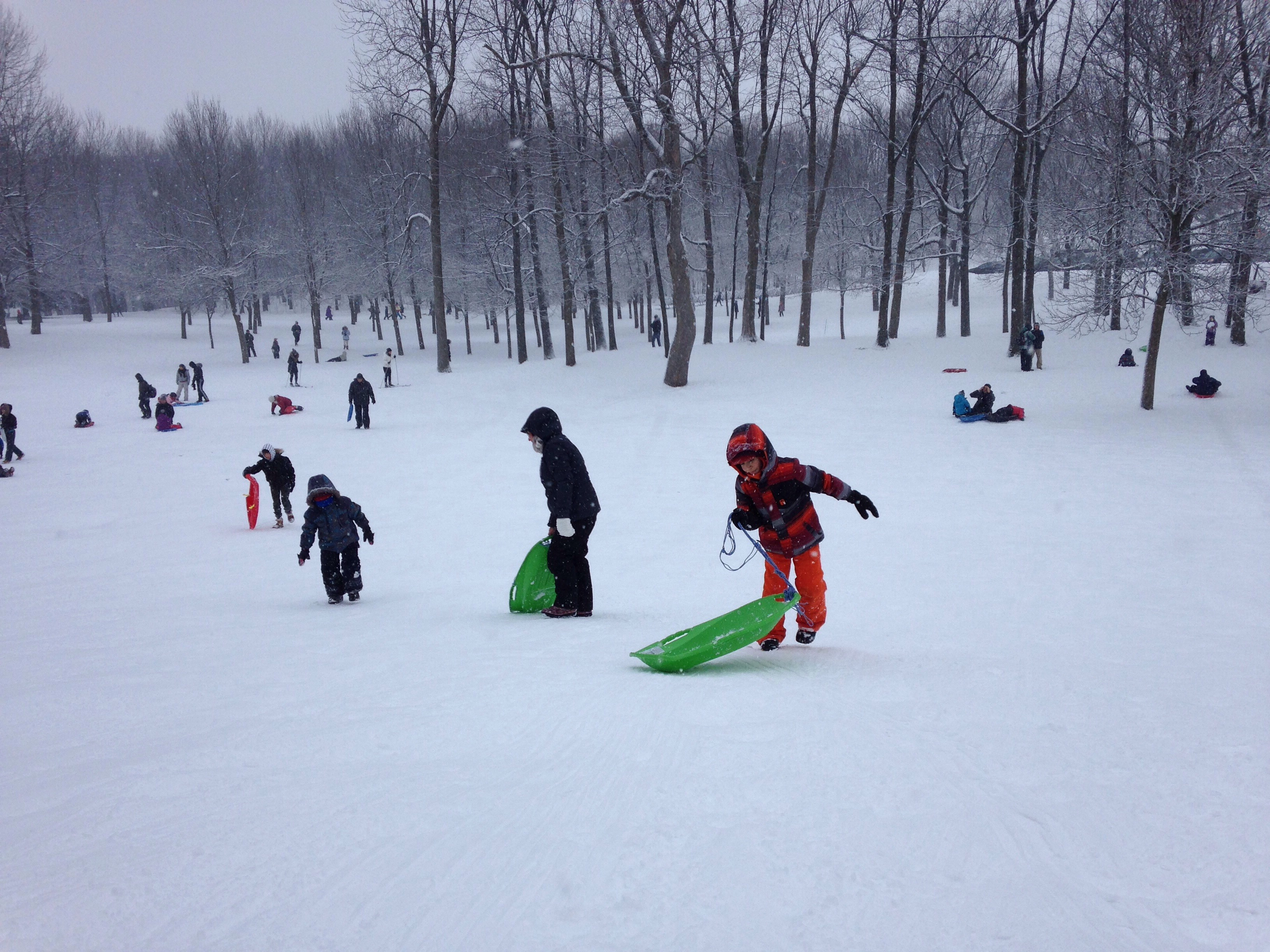 Sliding on Mount Royal