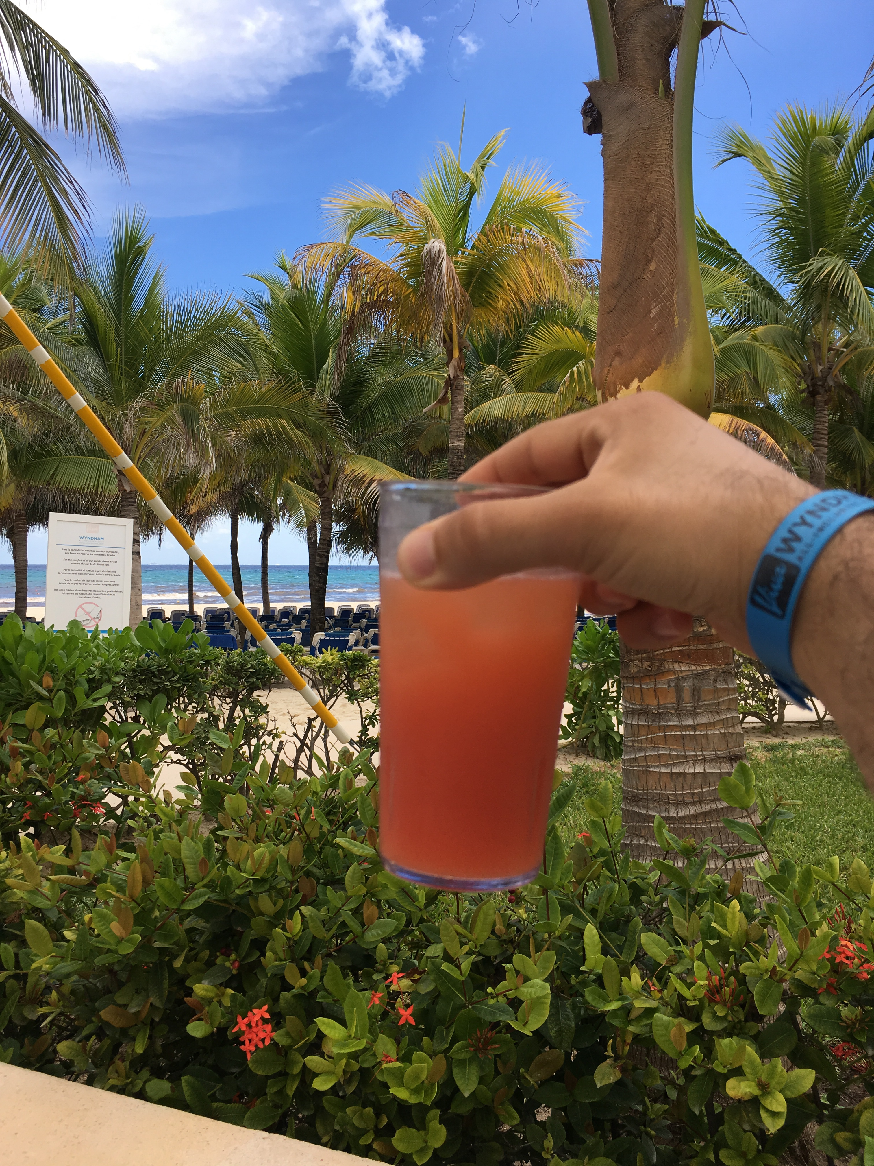 Planter's Punch – Playa del Carmen